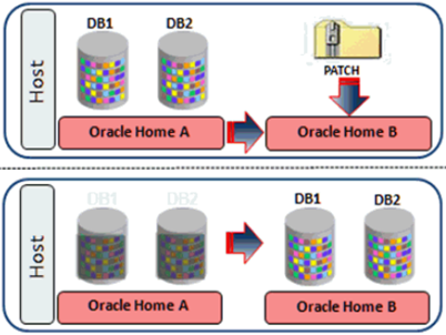 Oracle 12c database Out of Place patching reduce downtime