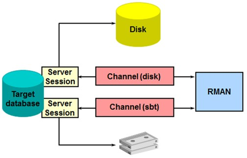 Oracle Recovery manager RMAN channel allocation