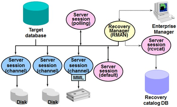 Oracle recovery manager rman components