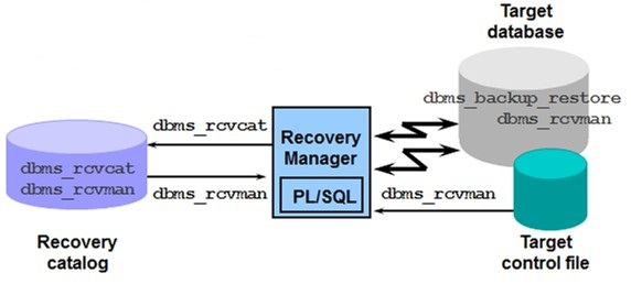 Oracle Recovery manager RMAN packages